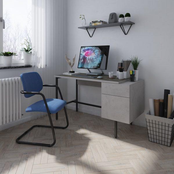 Delphi home office workstation