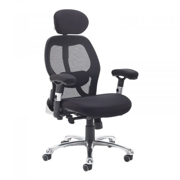 Sandro mesh back executive chair